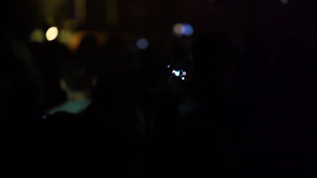 Young people having fun at music concert