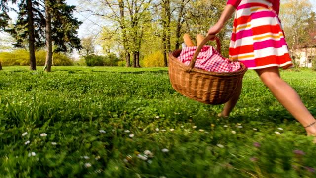 Jonge vrouw met picknickmanden in park