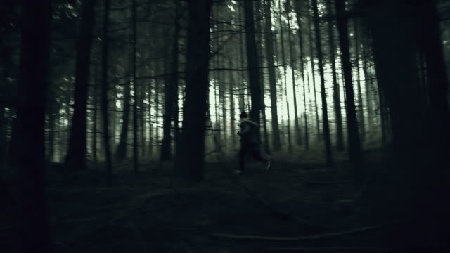 MONTAGE Young woman experiencing horror deep in the woods