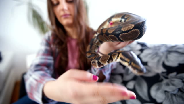Young woman holding snake