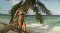 MS Young woman leaning against palm tree on beach / Seychelles