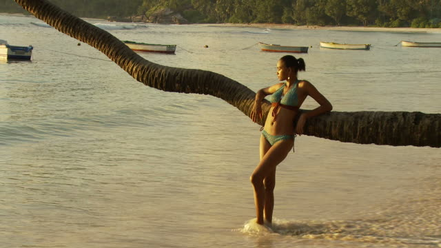 WS Young woman leaning on palm tree trunk looking at sea / Seychelles