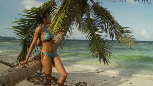 MS Young woman leaning on palm tree trunk looking at sea / Seychelles