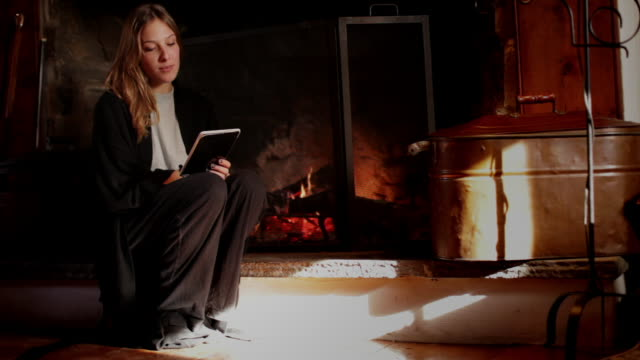 MS Young woman using electronic reader, fireplace in background / Kingston, New York, USA