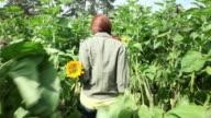 Young woman walking through sunflower field