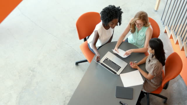 Young Women Entrepreneurs in a Business Meeting