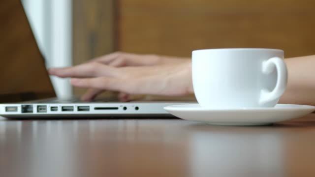 Young women using laptop in coffee shop.