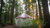 A yurt in the middle of the woods with a fire smoking next to it.