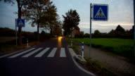 COSTANTE CAM: Zebra il traffico a piedi