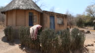Zimbabwe, secluded settlement near Chakari.