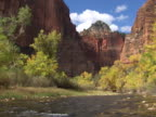 Zion: Virgin River through canyon