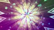 Zodiac FLOWER POWER