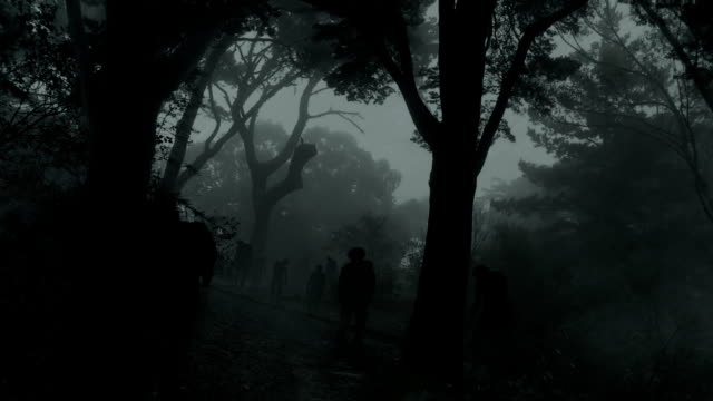 zombies in dark forest