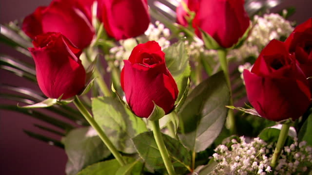 Zoom out from a single red rose to reveal the entire bouquet.