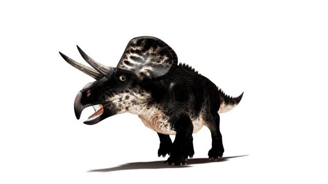 Zuniceratops dinosaur running