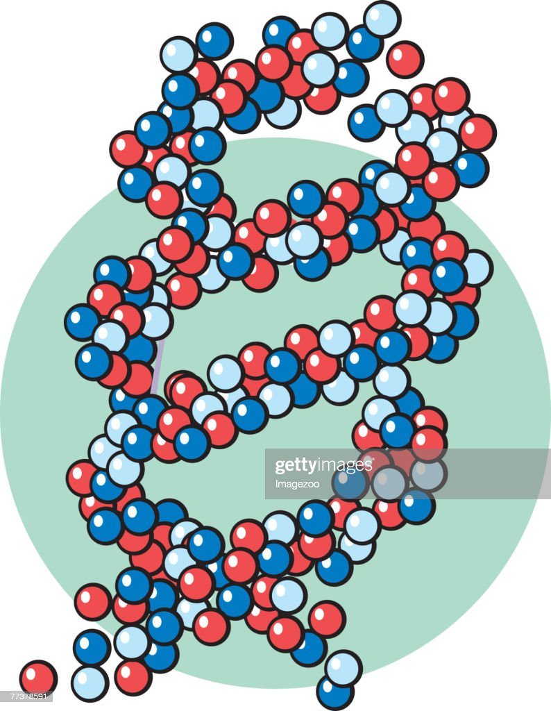 DNA : Illustration