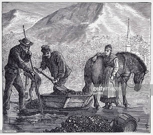 19th century illustration of collecting lake ore