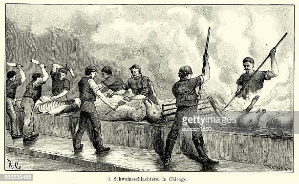 ilustraciones, imágenes clip art, dibujos animados e iconos de stock de 19 th century north america-cerdo matadero en chicago - matadero