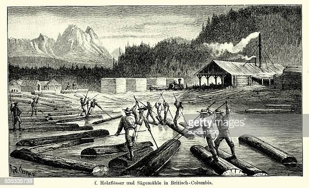 19th century north america -  sawmill in british columbia - history stock illustrations