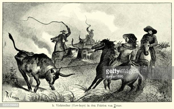 19th Century North America -  Texan Cowboys