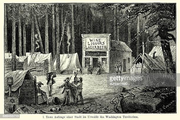 Século XIX da América do Norte-Washington território