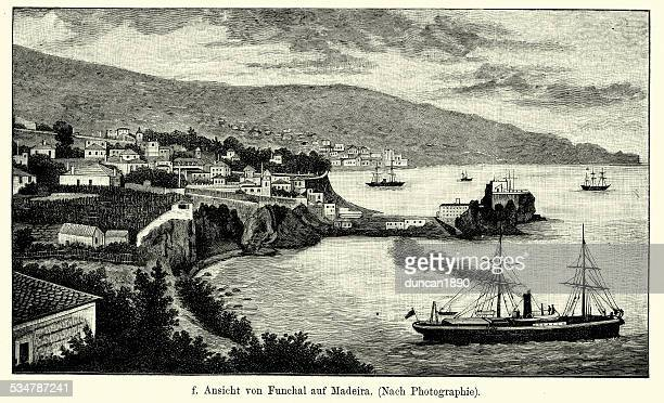 19th century portugal - funchal madeira - funchal stock illustrations