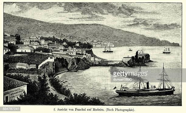 19th century portugal - funchal madeira - 19th century stock illustrations, clip art, cartoons, & icons