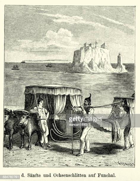 19th century portugal - funchal ox sled and litter - sedan stock illustrations, clip art, cartoons, & icons