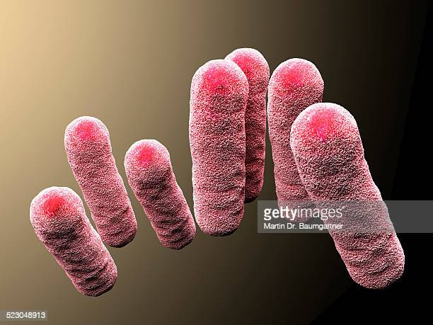 3d-rendering, enterobacteriaceae, bacteria - medium group of objects stock illustrations, clip art, cartoons, & icons