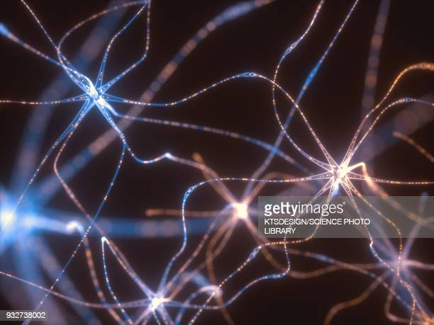 abstract connecting lines, illustration - human nervous system stock illustrations