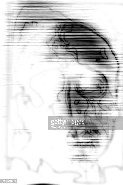 abstract drawing of human face - high key stock illustrations, clip art, cartoons, & icons