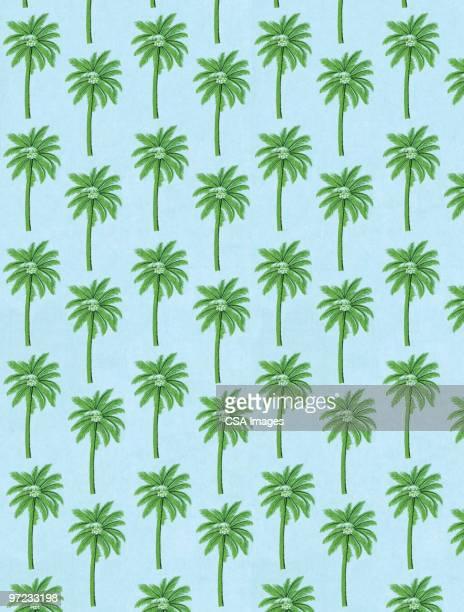 illustrations, cliparts, dessins animés et icônes de abstract pattern - palmier
