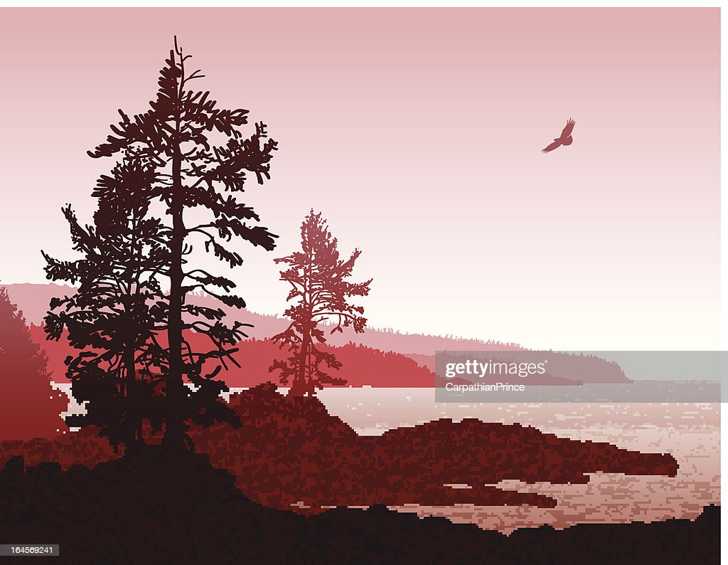 Abstract Vancouver Island BC West Coast Landscape