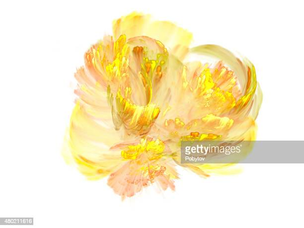Abstract yellow flower on a white background
