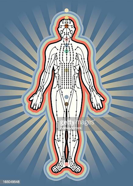accupuncture meridians - acupuncture stock illustrations, clip art, cartoons, & icons