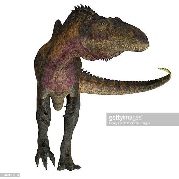 acrocanthosaurus dinosaur on white background. - animal limb stock illustrations, clip art, cartoons, & icons
