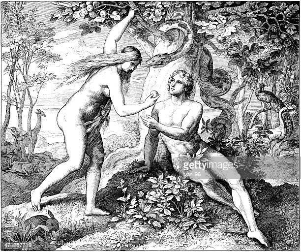 adam & eve eat forbidden fruit - biblical event stock illustrations