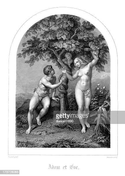 adam and eve - spirituality stock illustrations