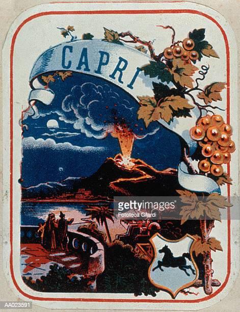 advertisement for wine with mt. vesuvius erupting - mt vesuvius stock illustrations, clip art, cartoons, & icons