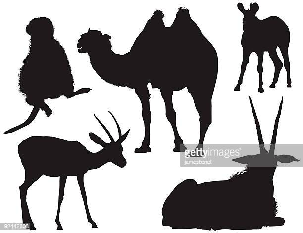 african animal silhouettes ( vector ) - european bison stock illustrations, clip art, cartoons, & icons