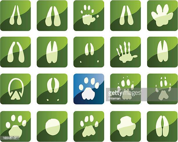 african foot print icons - kudu stock illustrations, clip art, cartoons, & icons