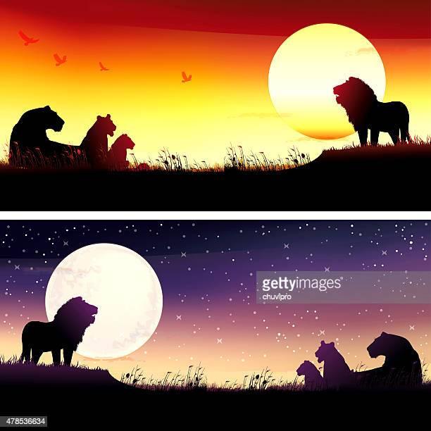 African Lions silhouettes safari set