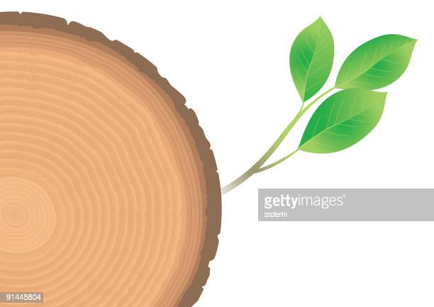 age - tree rings stock illustrations, clip art, cartoons, & icons