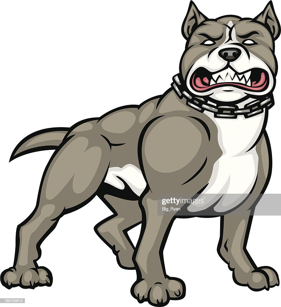 Aggressive pitbull vector art getty images - Dessin de pitbull ...