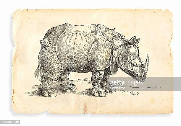 Albrecht Durer rhinoceros woodcut 1535