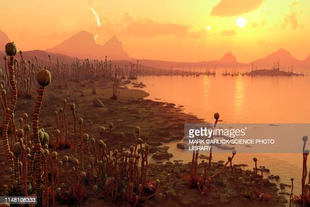 alien plants on an exoplanet, illustration - extrasolar planet stock illustrations