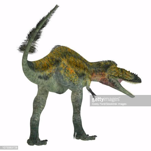 Alioramus dinosaur, rear view.