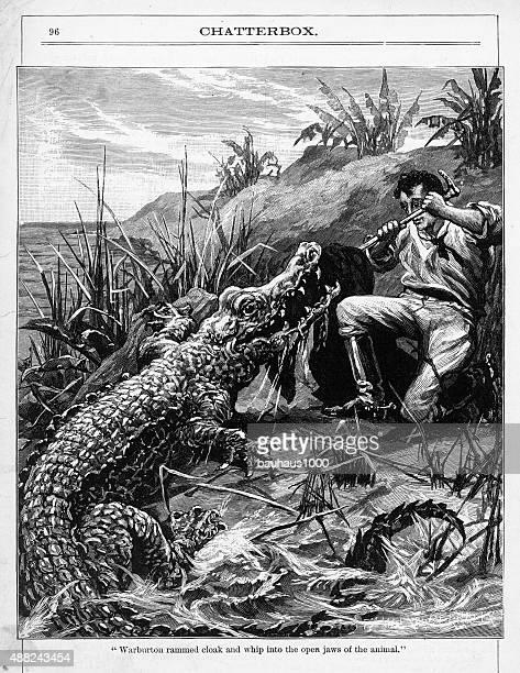 Alligator Attacking a Man Victorian Engraving