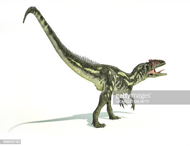 allosaurus dinosaur, artwork - jurassic stock illustrations, clip art, cartoons, & icons