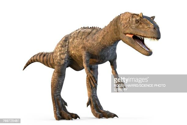 Allosaurus dinosaur, illustration
